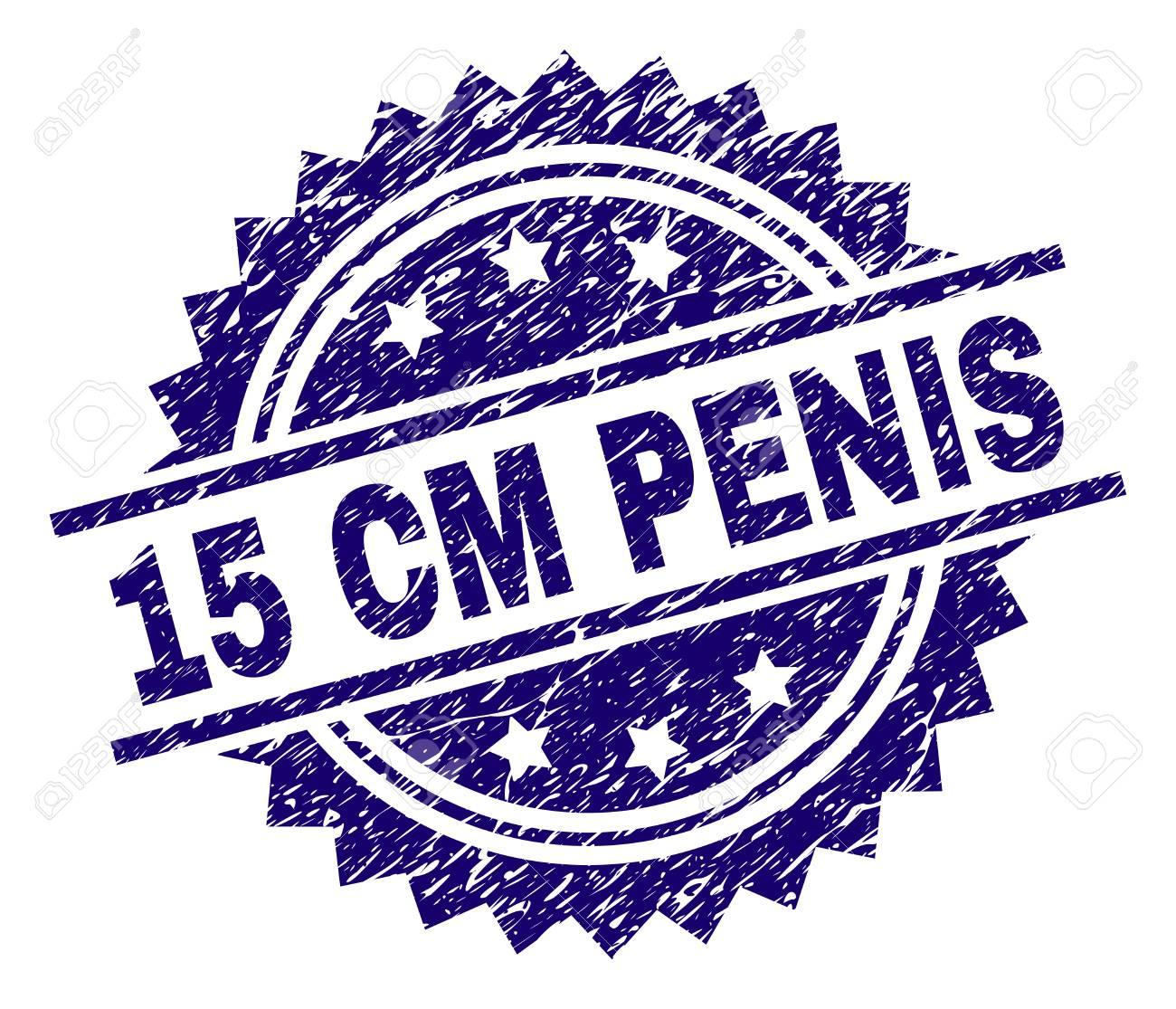 Penis 15 cm Average