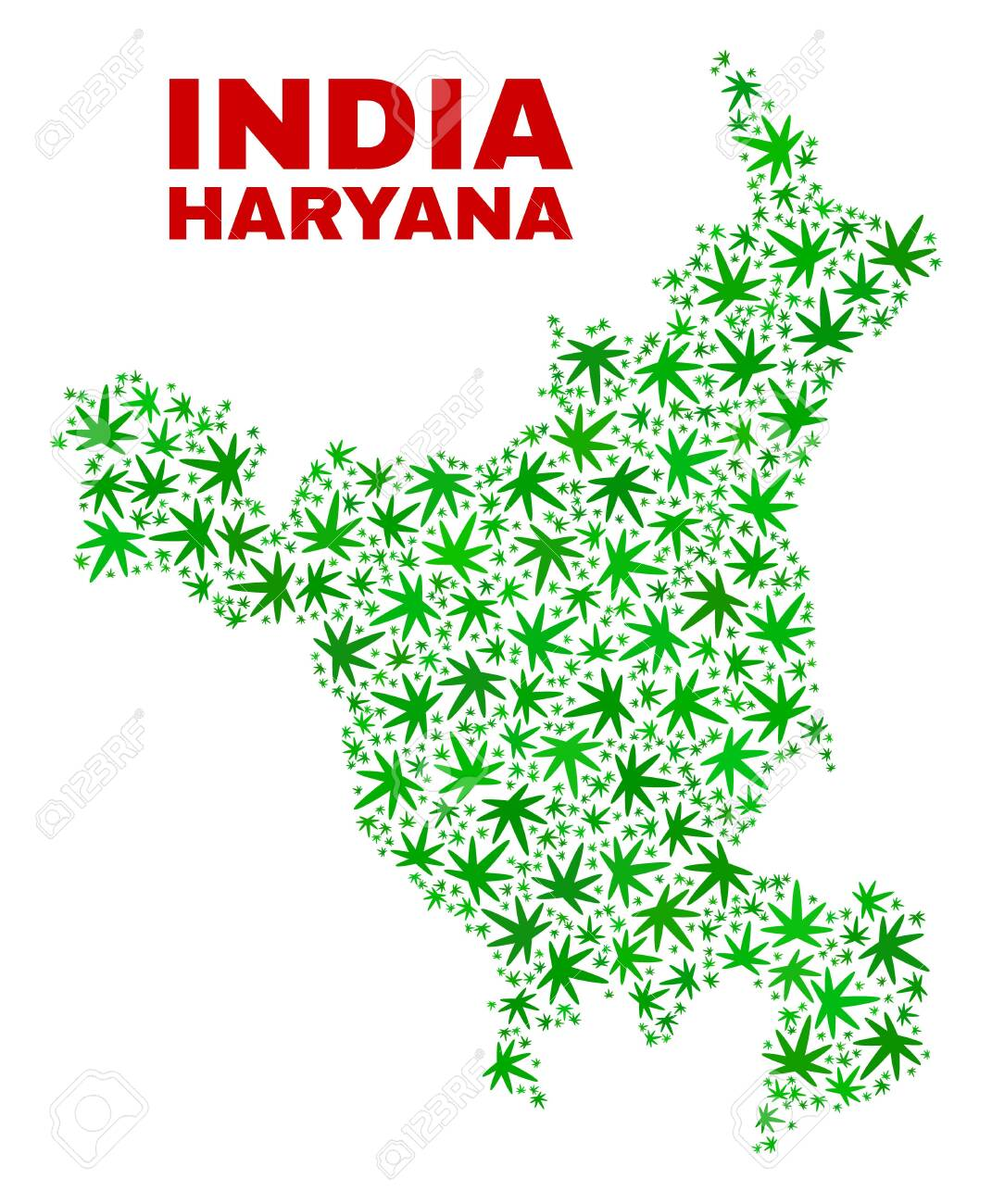 Vector cannabis Haryana State map collage  Concept with green