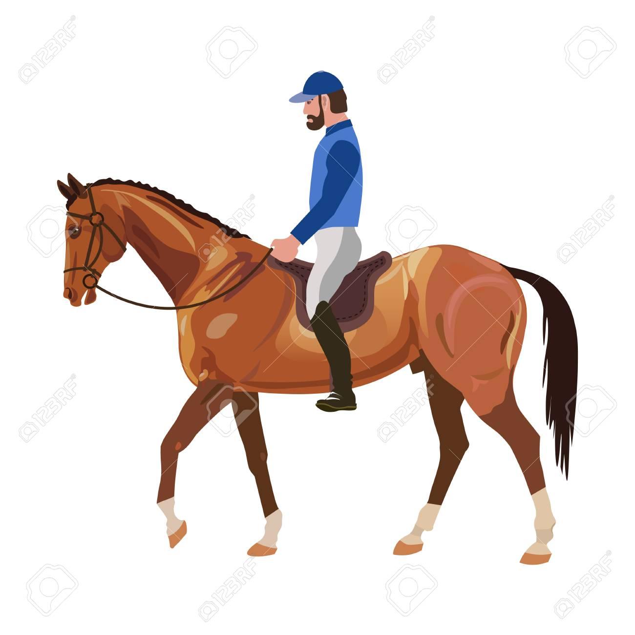 Horseback Rider Vector Illustration Royalty Free Cliparts Vectors And Stock Illustration Image 79937045