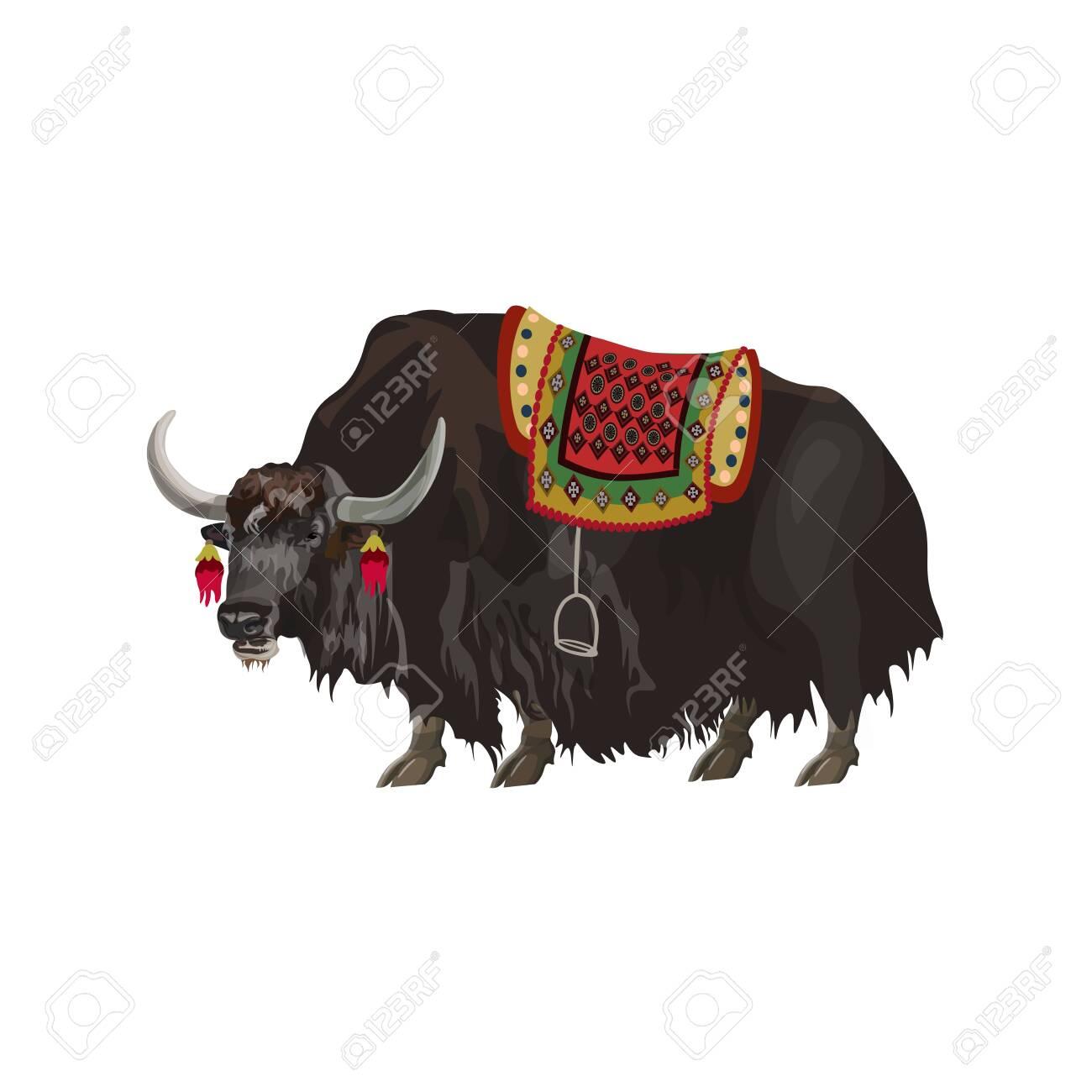 Yak animal with saddle. Vector illustration isolated on white background - 126339241