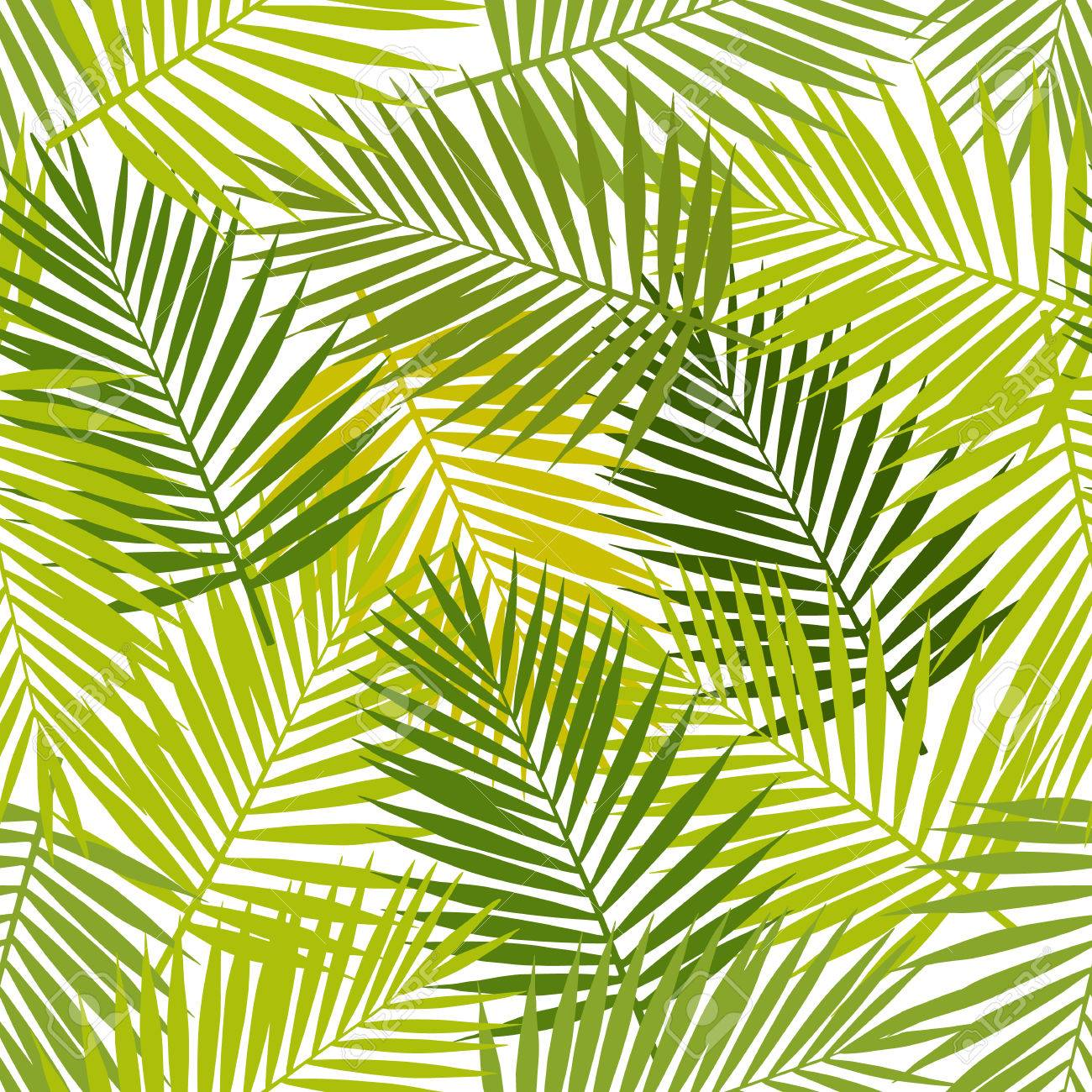 Palm leaf silhouettes seamless pattern. Vector illustration. Tropical leaves. - 51152301