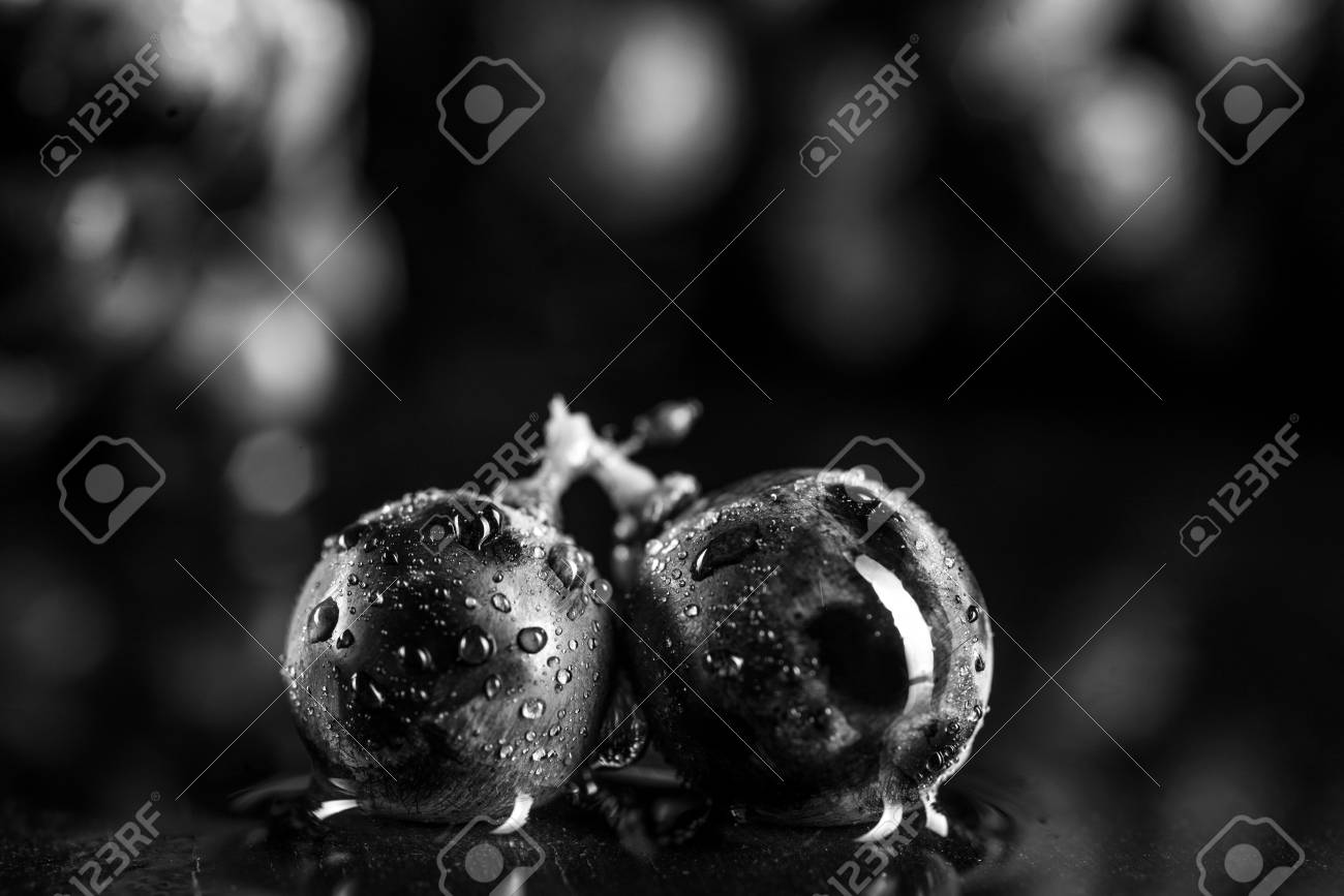 Berries of dark bunch of grape in low light isolated on white background water drops