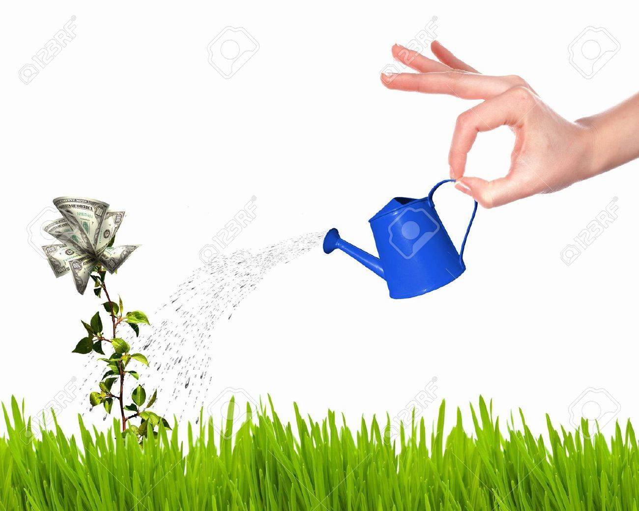 Human hand with a pot watering growing money tree Stock Photo - 12404405