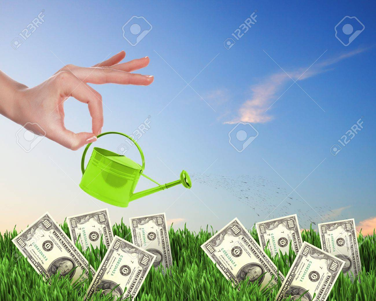 Human hand with a pot watering growing money tree Stock Photo - 13919883