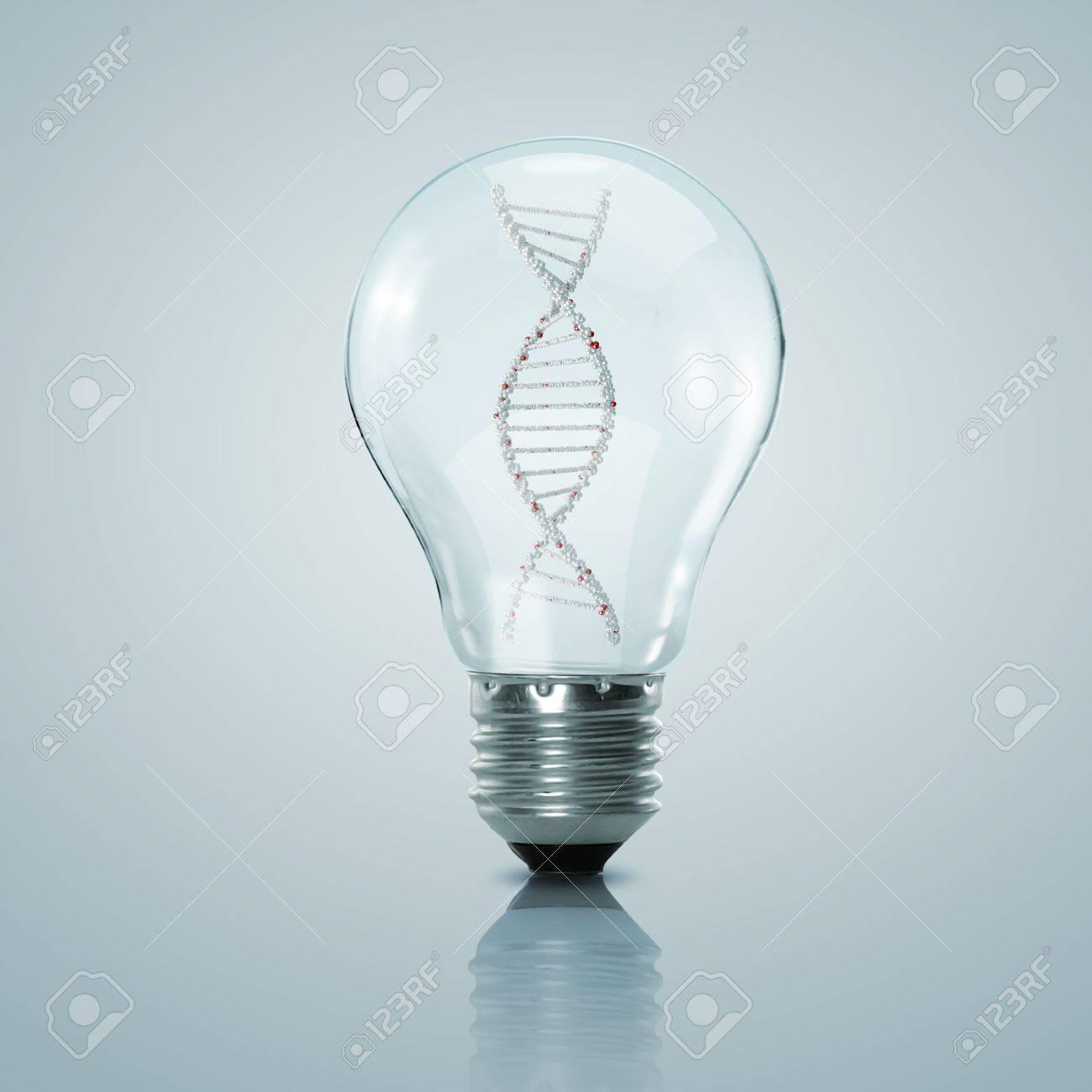 Human DNA strand inside a electric light bulb Stock Photo - 16226423