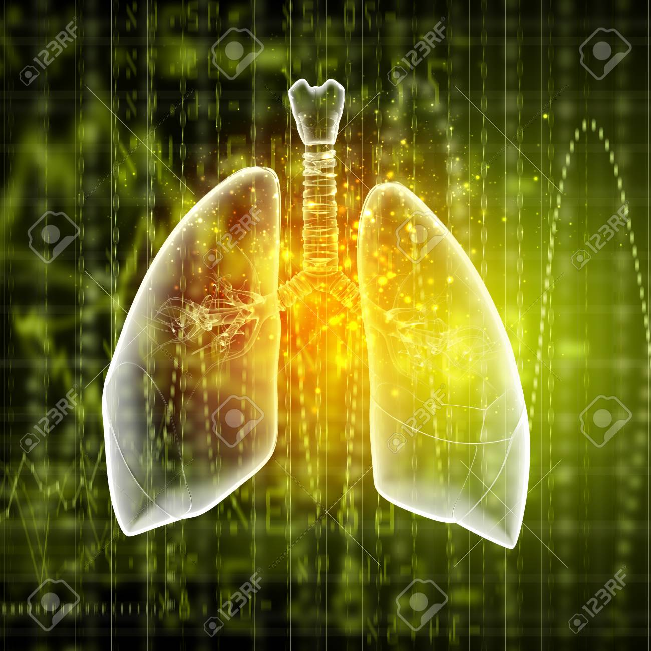 Schematic illustration of human lungs with the different elements on a colored background  Collage Stock Photo - 18747537