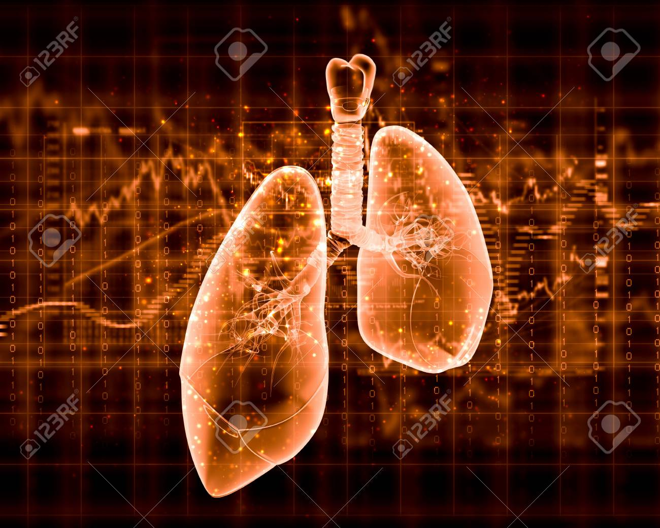Schematic illustration of human lungs with the different elements on a colored background  Collage Stock Photo - 18822566