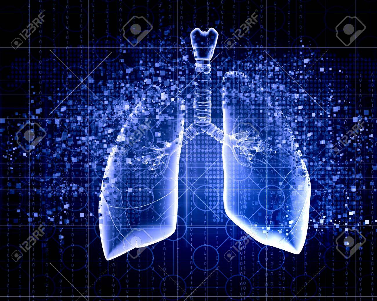 Schematic illustration of human lungs with the different elements on a colored background  Collage Stock Photo - 18978001