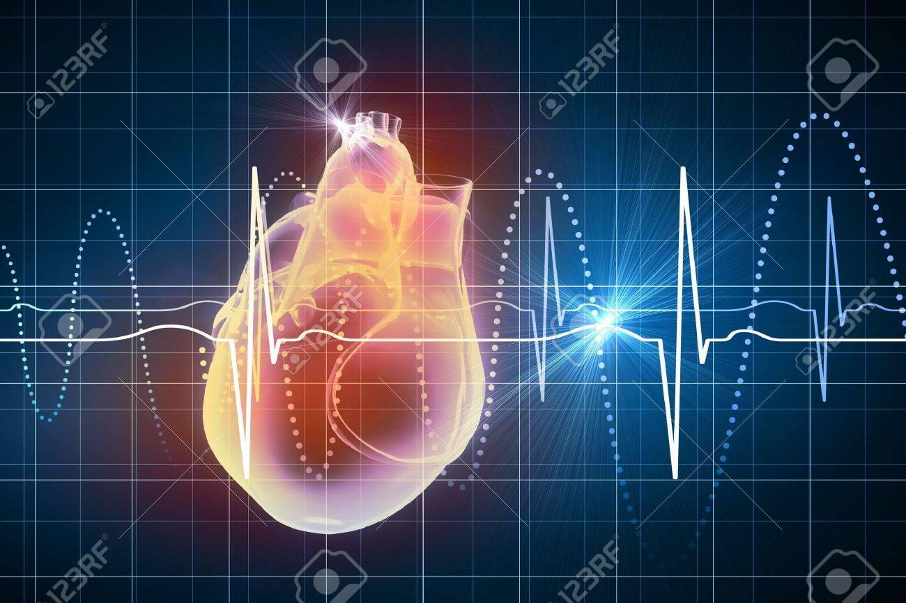 Virtual image of human heart with cardiogram Stock Photo - 21449111