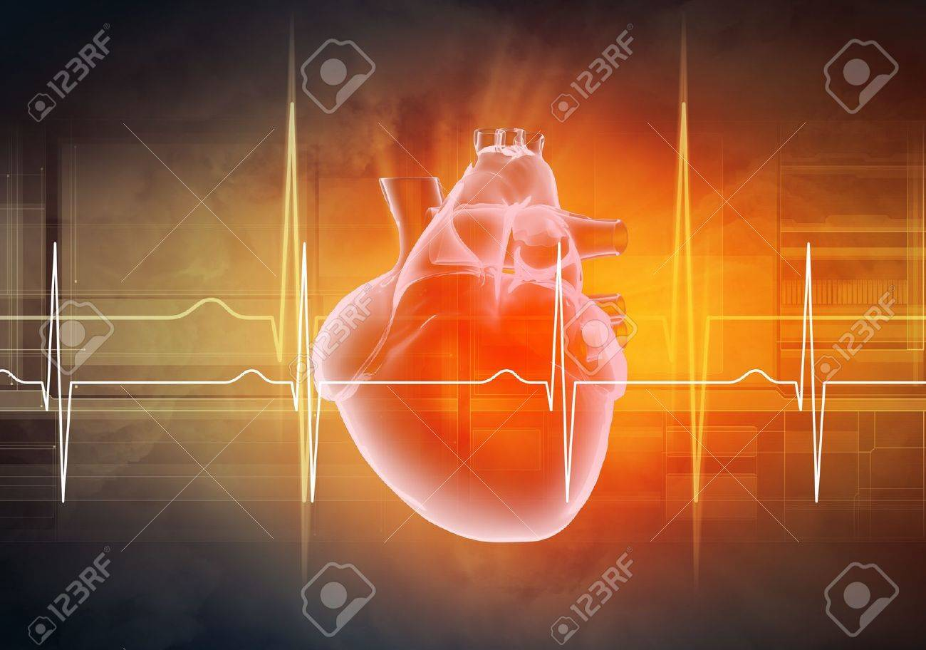 Virtual image of human heart with cardiogram Stock Photo - 21481136