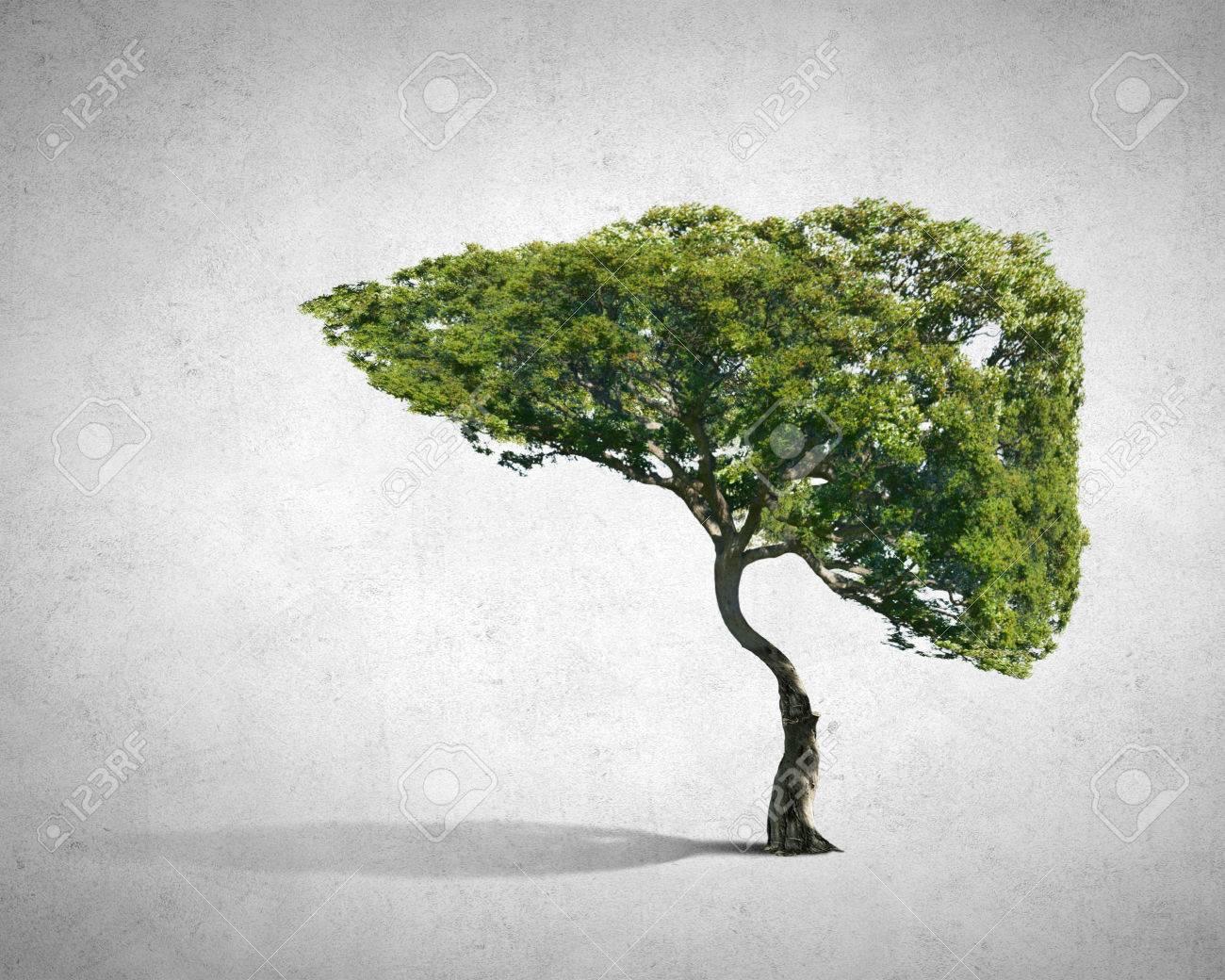 Konzeptionelle Bild Der Grünen Baum Geformt Wie Menschliche Leber ...