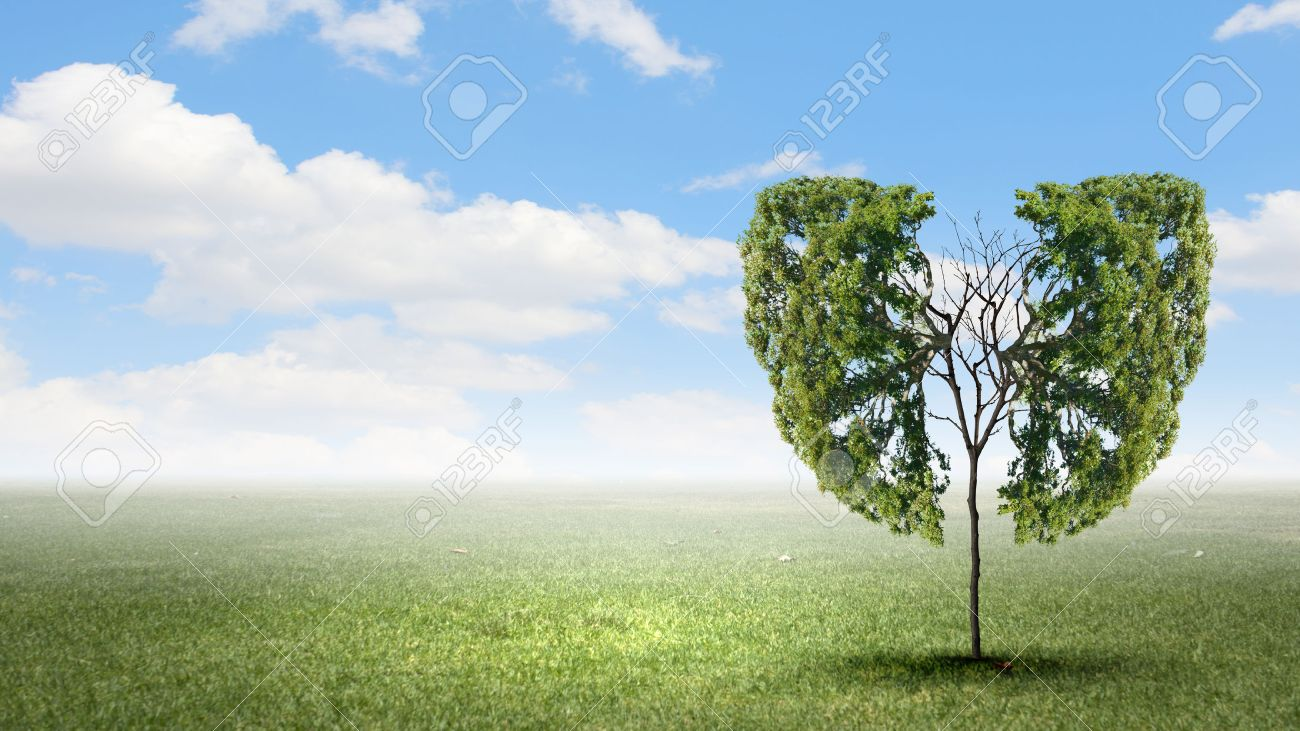 Conceptual image of green tree shaped like human lungs - 36718653