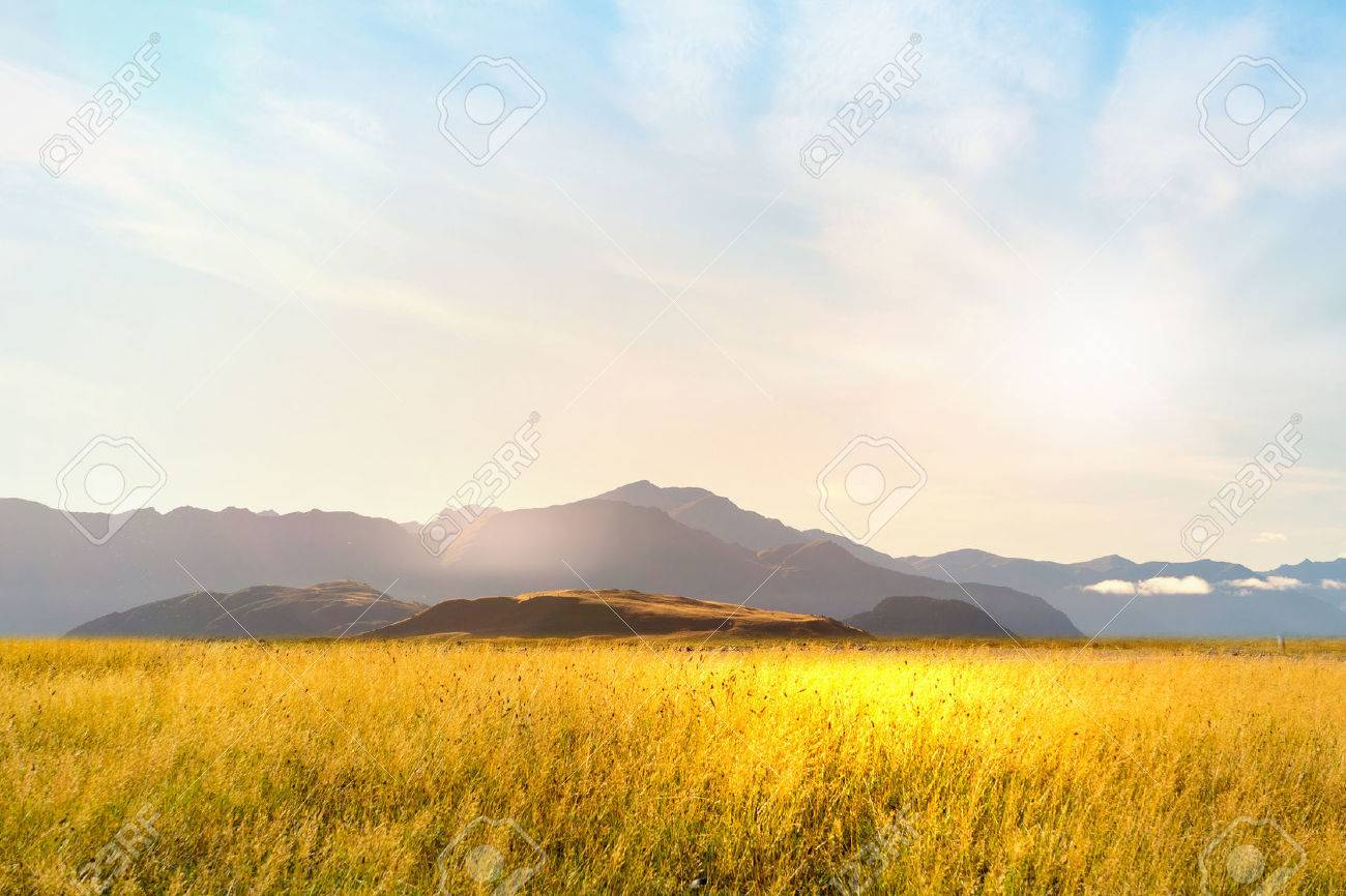 Natural landscape of summer field and high mountain - 45643395