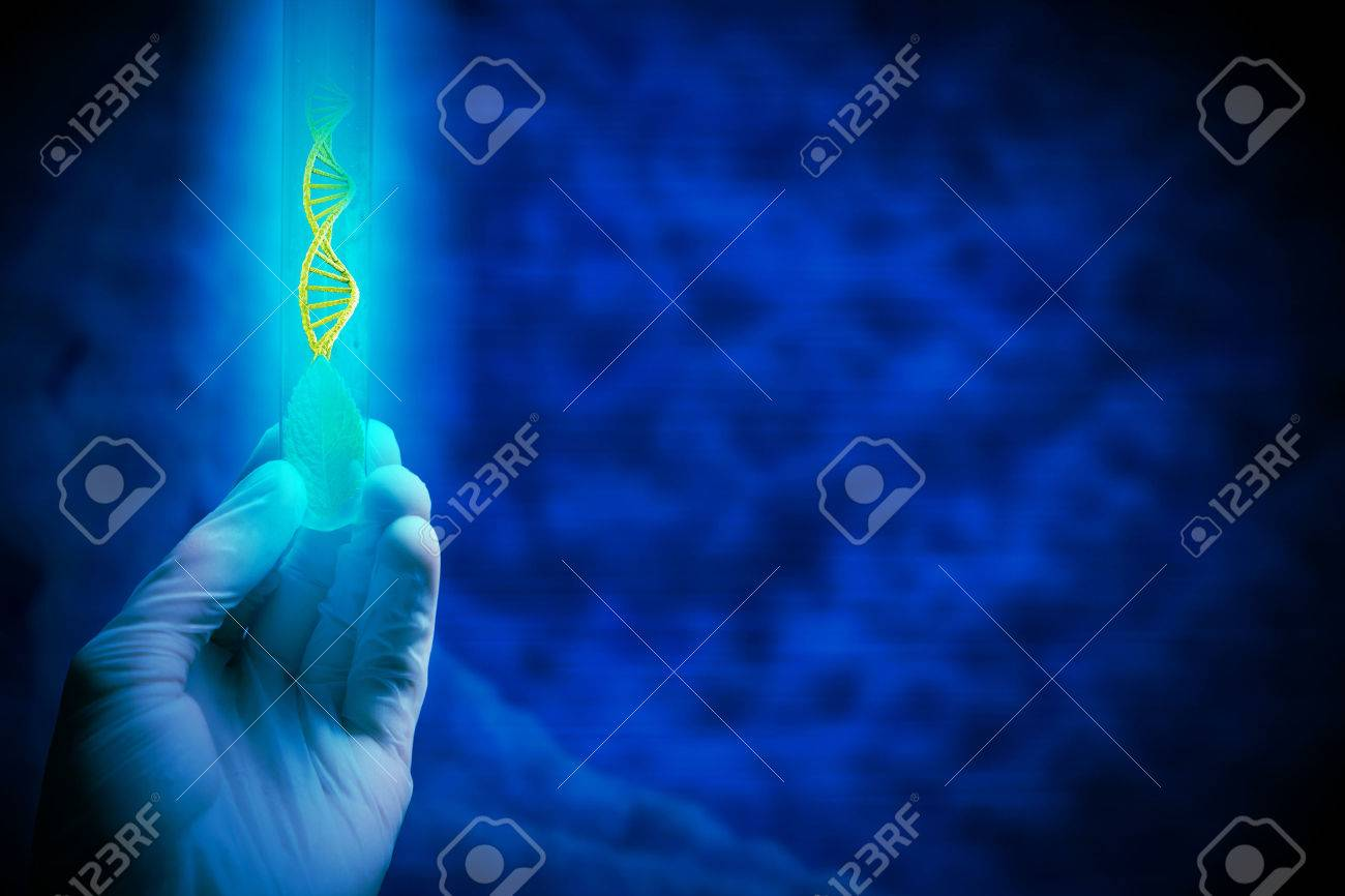 Close up of human hand holding test tube with green sprout Standard-Bild - 52989269
