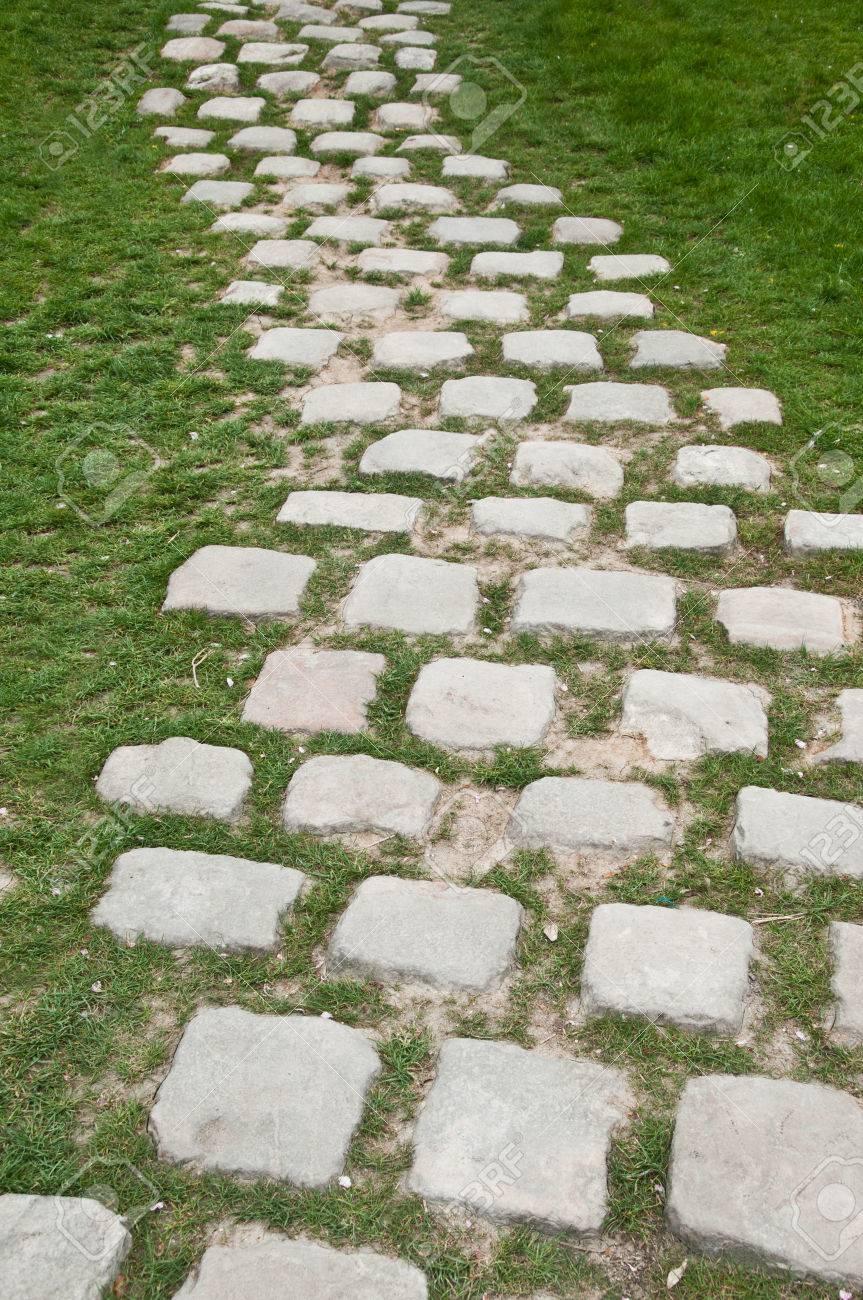 pavimento en adoquines en el jardn foto de archivo