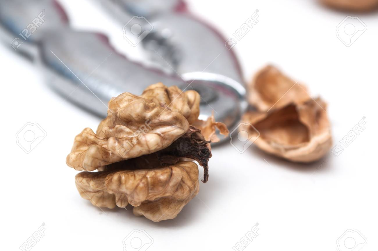 closeup of walnuts and nutcracker on white background stock photo
