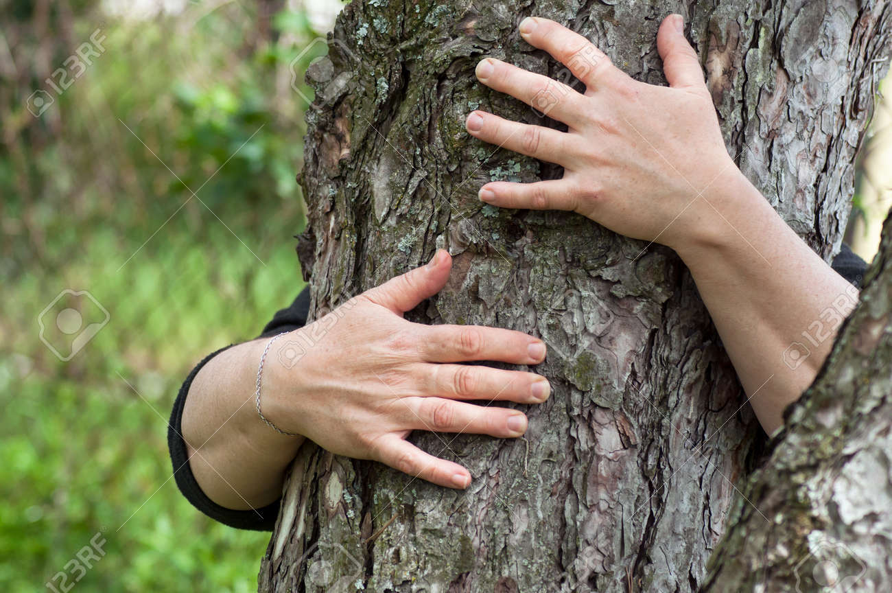 closeup of woman hugging a tree trunk in a forest - 123339773