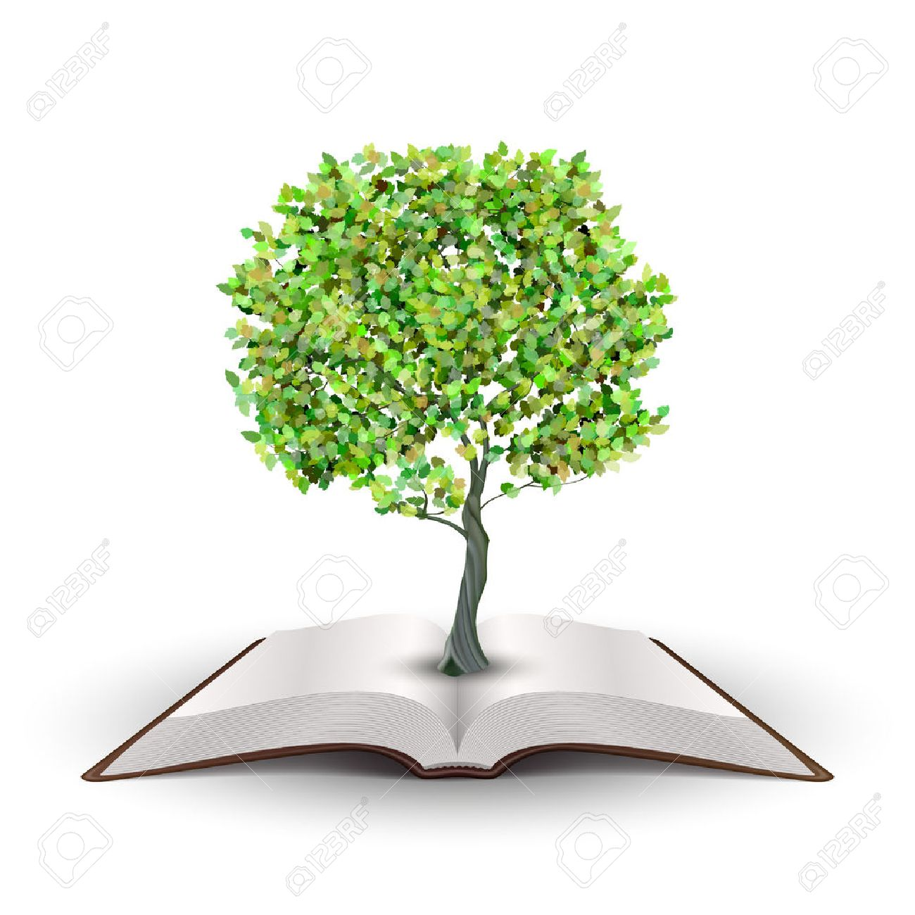 Tree growing from open book Vector isolated on white Stock Vector - 22787305