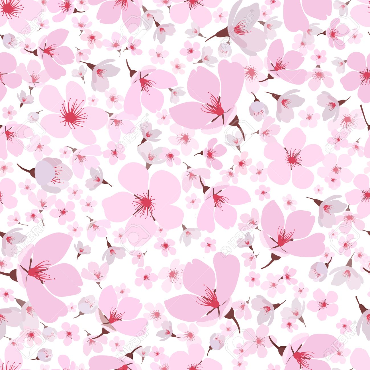 Seamless background pattern of pink Sakura blossom or Japanese flowering cherry symbolic of Spring in a random arrangement on a white background  square format suitable for textile  wallpaper or tiles Stock Vector - 27843028
