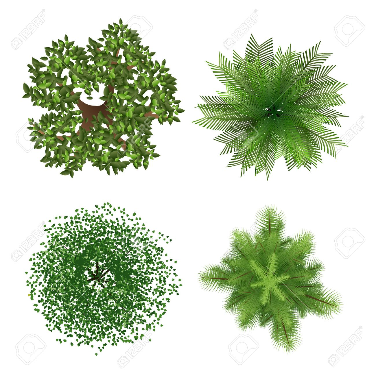 Plant top view vector in group download free vector art stock - Top View Top View Trees Illustration 37844671 Top View Trees Vector