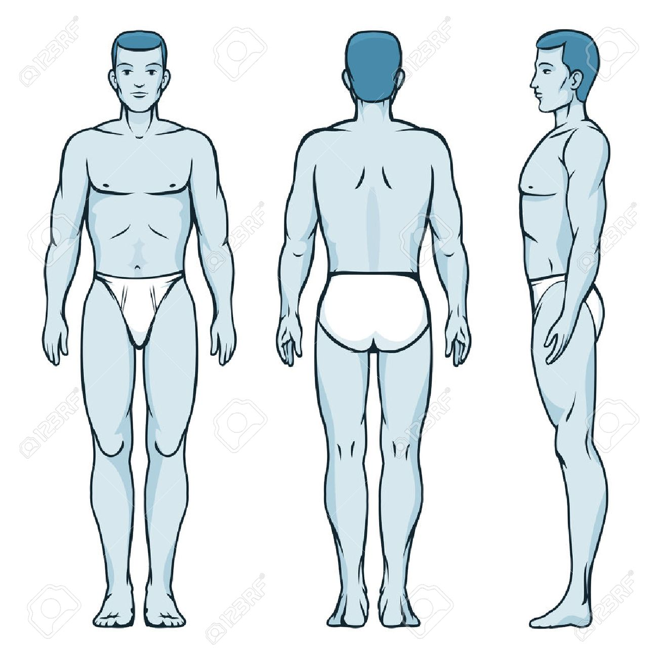 Man body model  Front, back and side human poses
