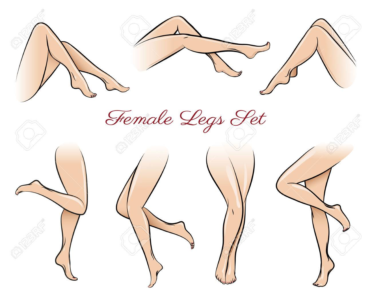 Vector Illustration Female Legs Set Body Beautiful Sexy Beauty Fashion Sexual Naked Attractive Nude