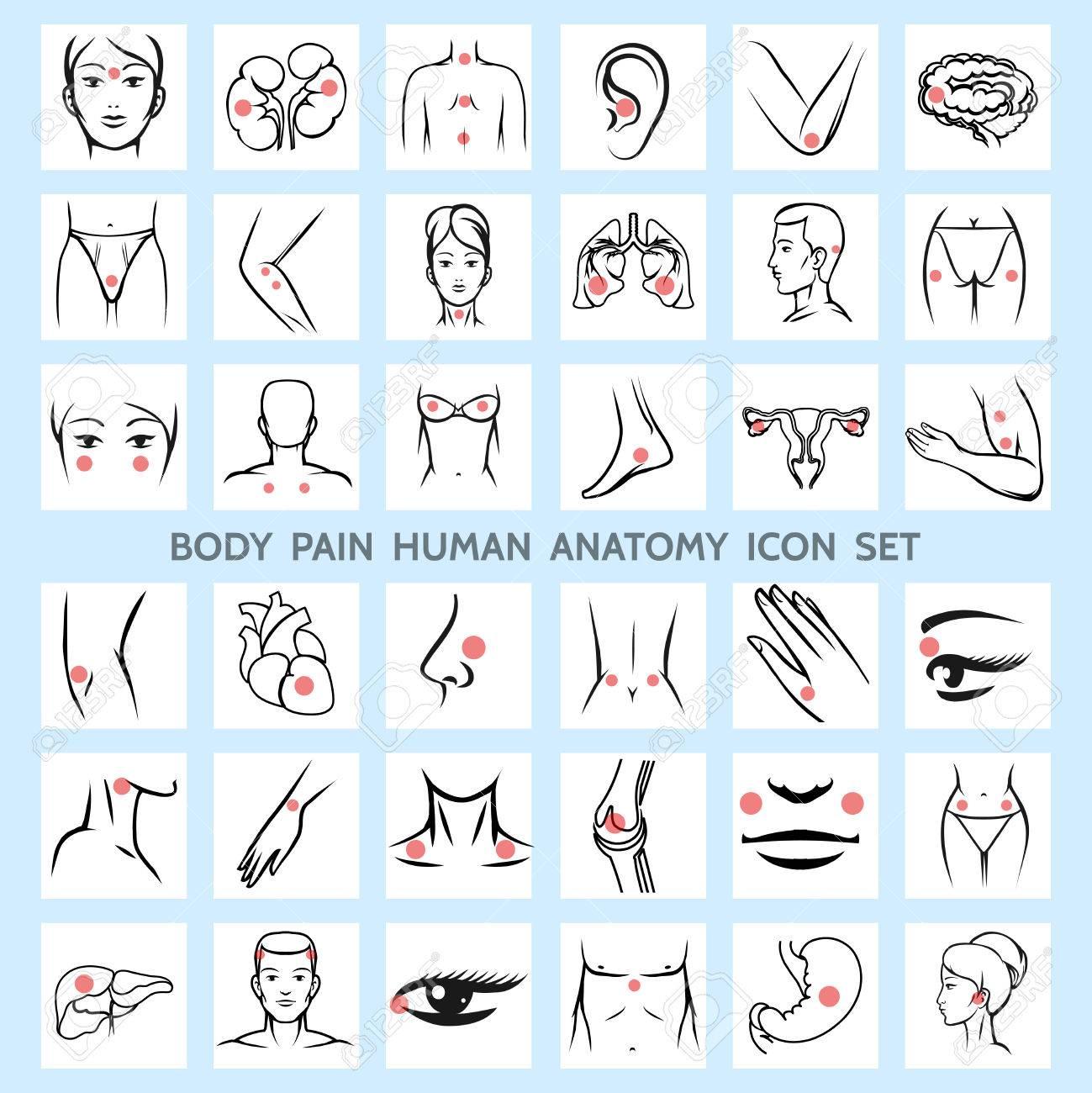 Body Pain Human Anatomy Icons. Medical Eye Brain Trauma Urinary ...