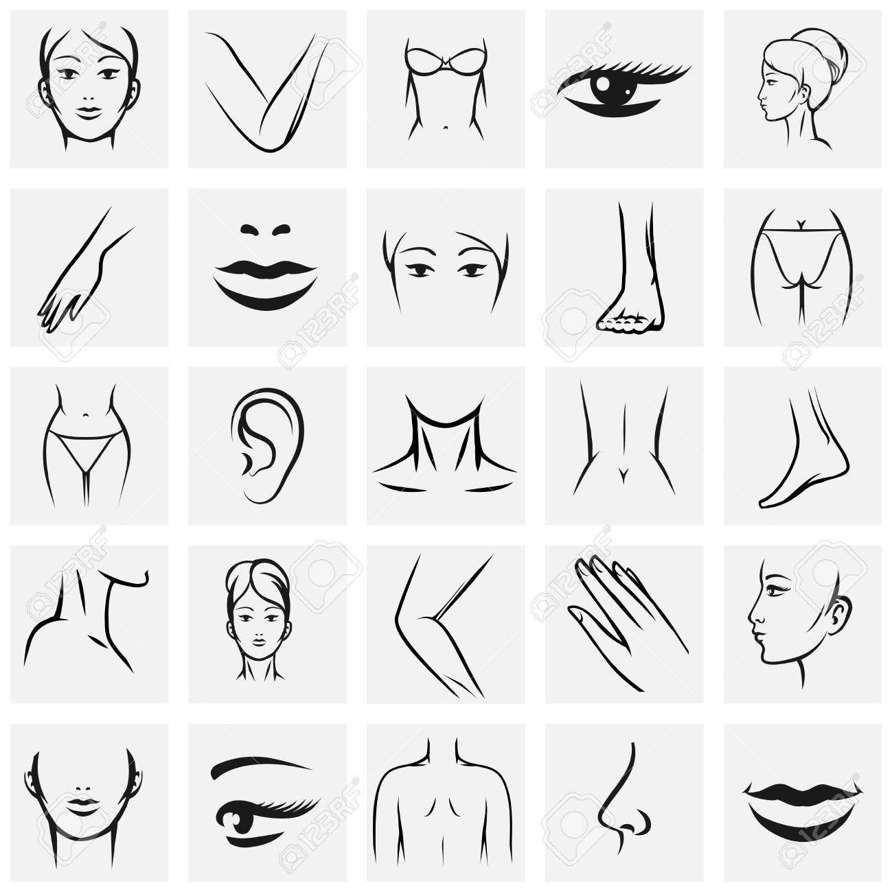 Female Body Parts Icons Set Femininity Fashion Contour Beauty Knee And Ass Hand