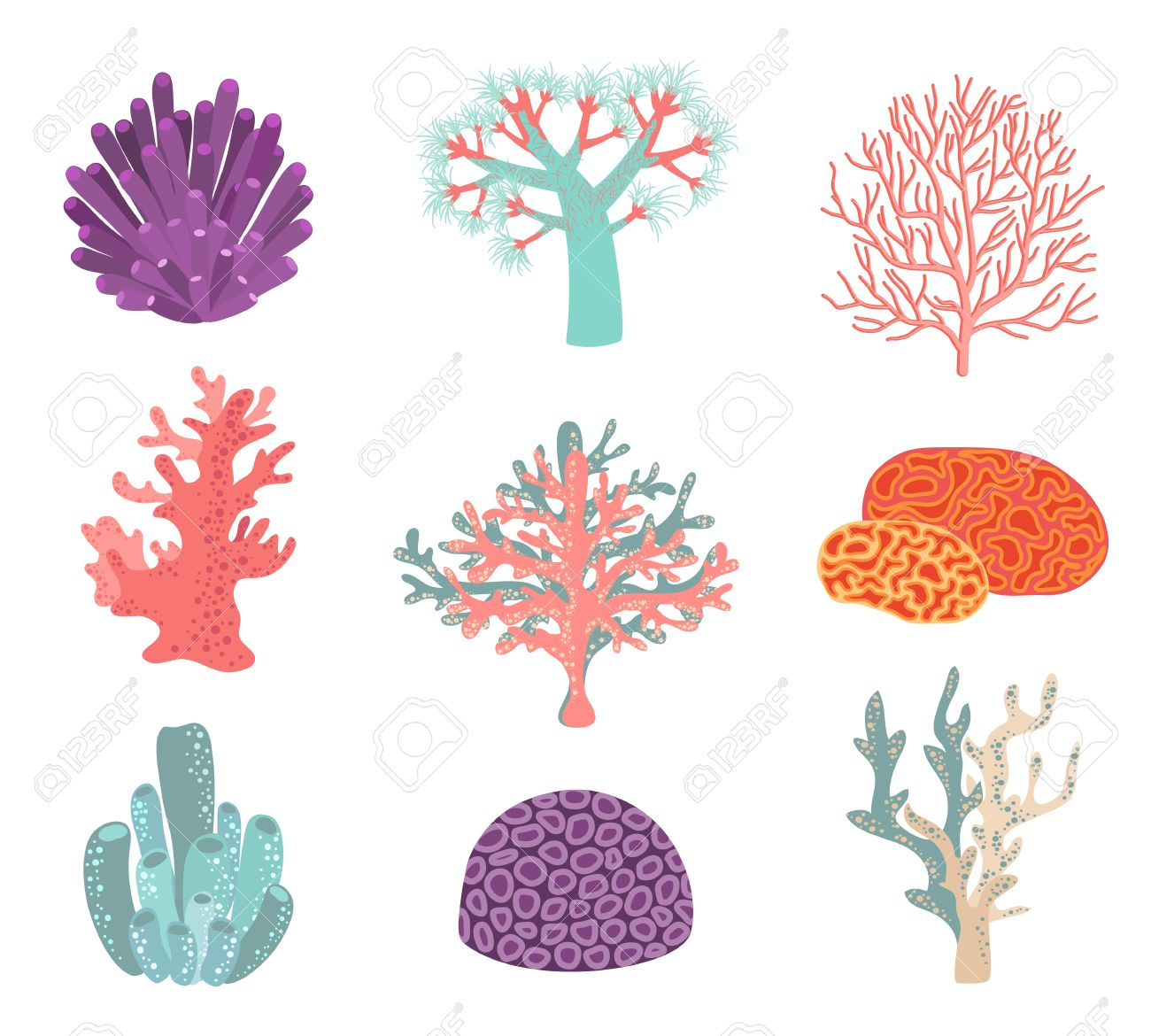 coral isolated stock photos royalty free coral isolated images