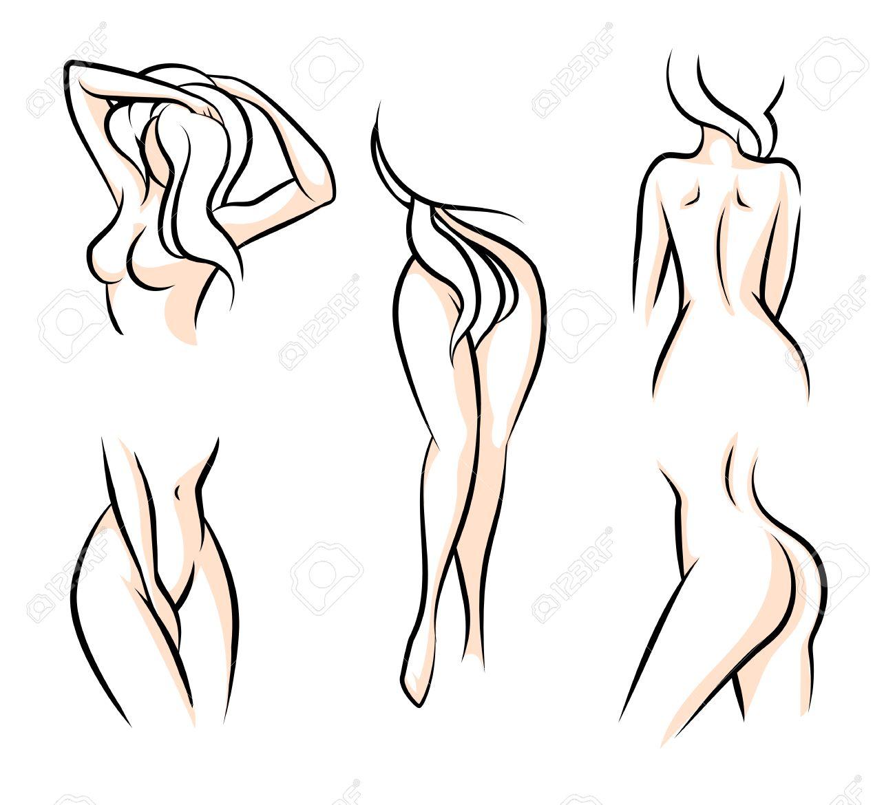 Beste Weibliche Körperteile Bilder Fotos - Anatomie Ideen - finotti.info