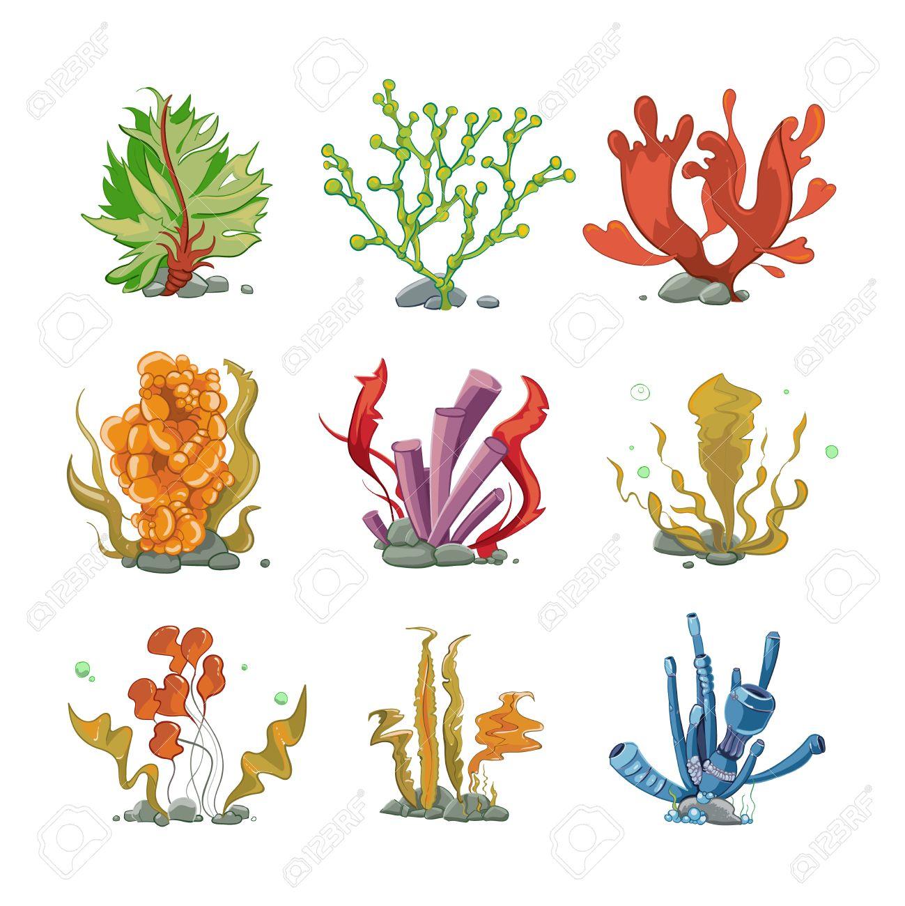 漫画の水中植物はベクトルのスタイルです海洋生物水中海自然海藻