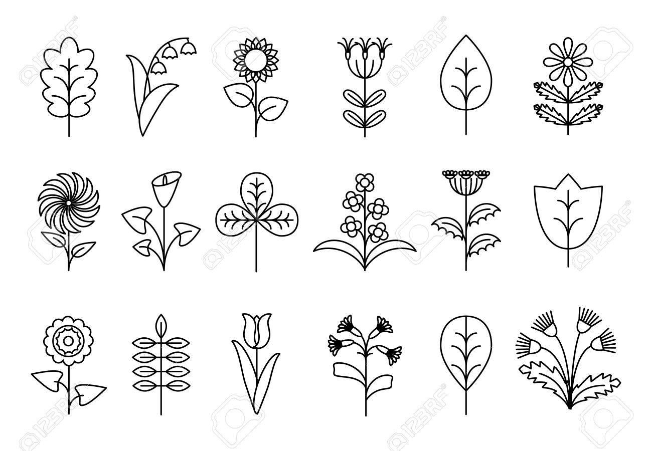 Flores Y Hojas Estilizadas Línea. La Naturaleza Floral, Plantas ...