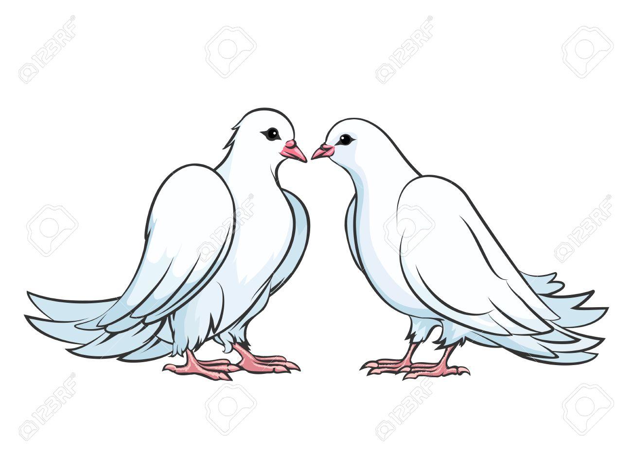 Kussen Der Paare Von Tauben Dove Paar Liebe Taubenvogelh Kuss