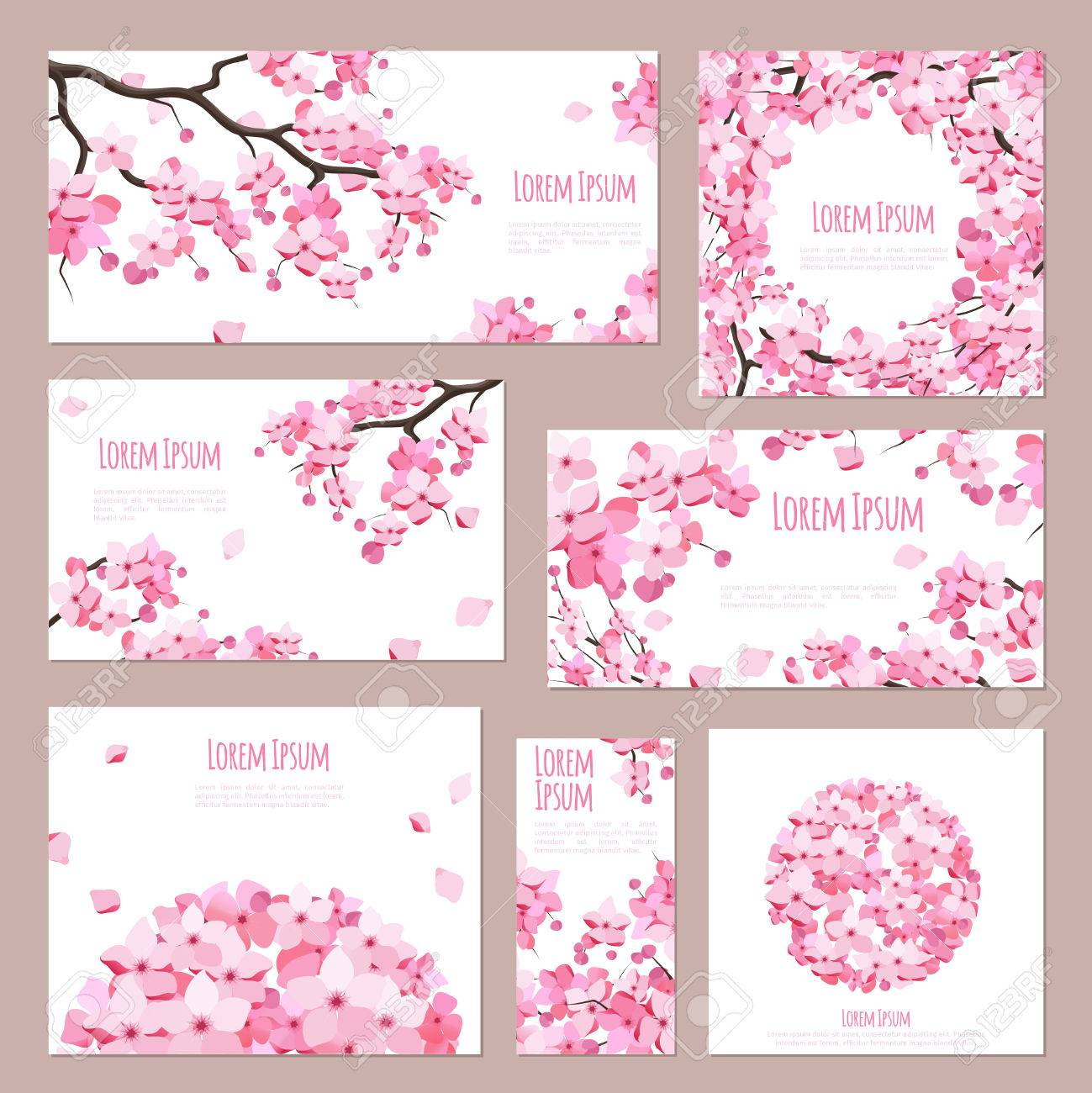 Greeting cards vector template with blossoming sakura on white greeting cards vector template with blossoming sakura on white stock vector 59123268 m4hsunfo