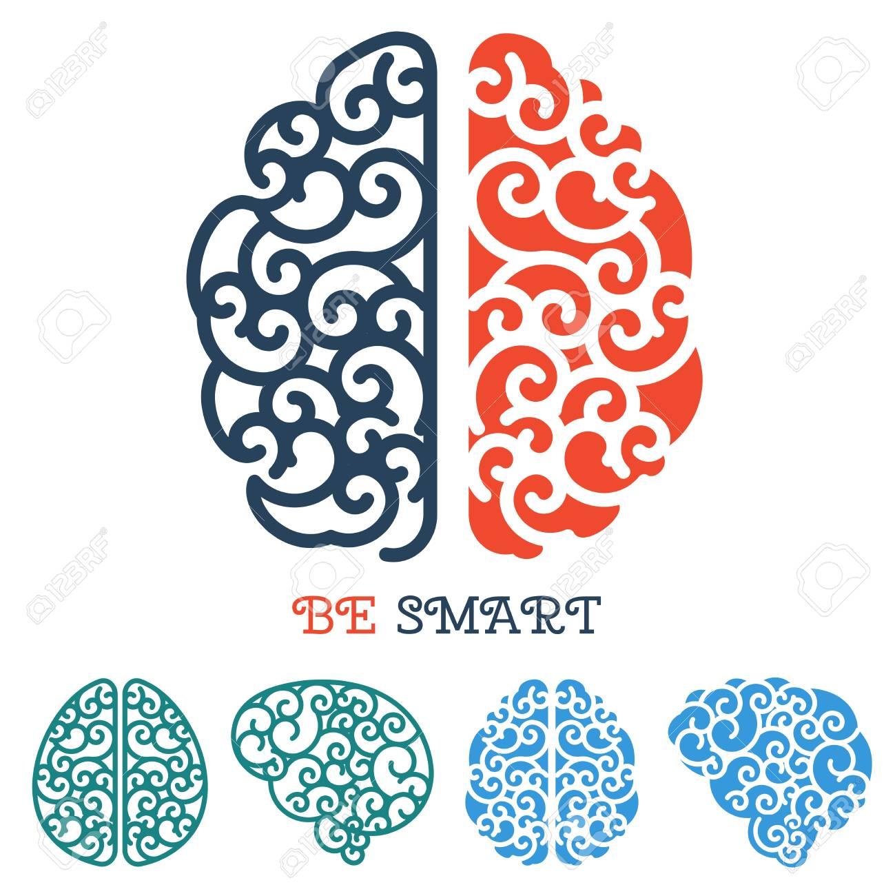 Human Linear Brain Anatomy Thinking Label Vector Intelligence ...