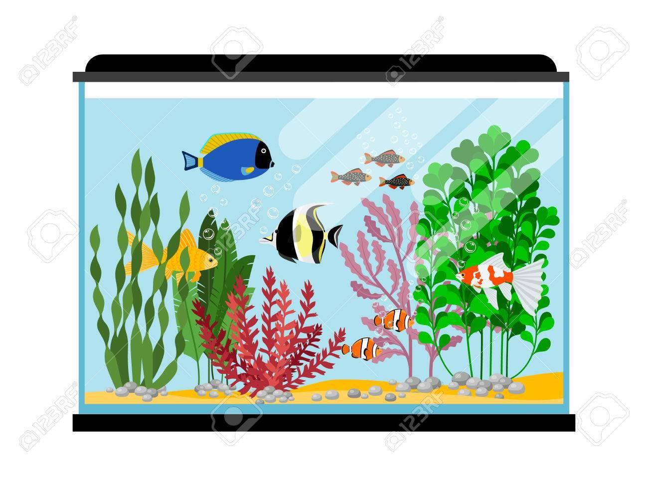 Cartoon Fishes In Aquarium Saltwater Or Freshwater Fish Tank
