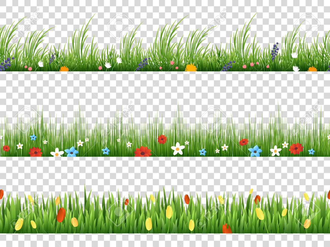 Vector green grass and spring flowers nature border patterns on transparent background vector illustration. Herbal and flower lawn border - 69789619