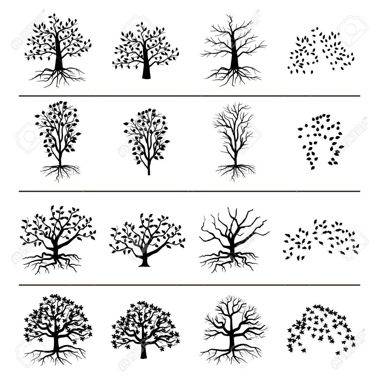 根葉落ち葉は白い背景で隔離のベクトルの木ツリーと葉モノクロ