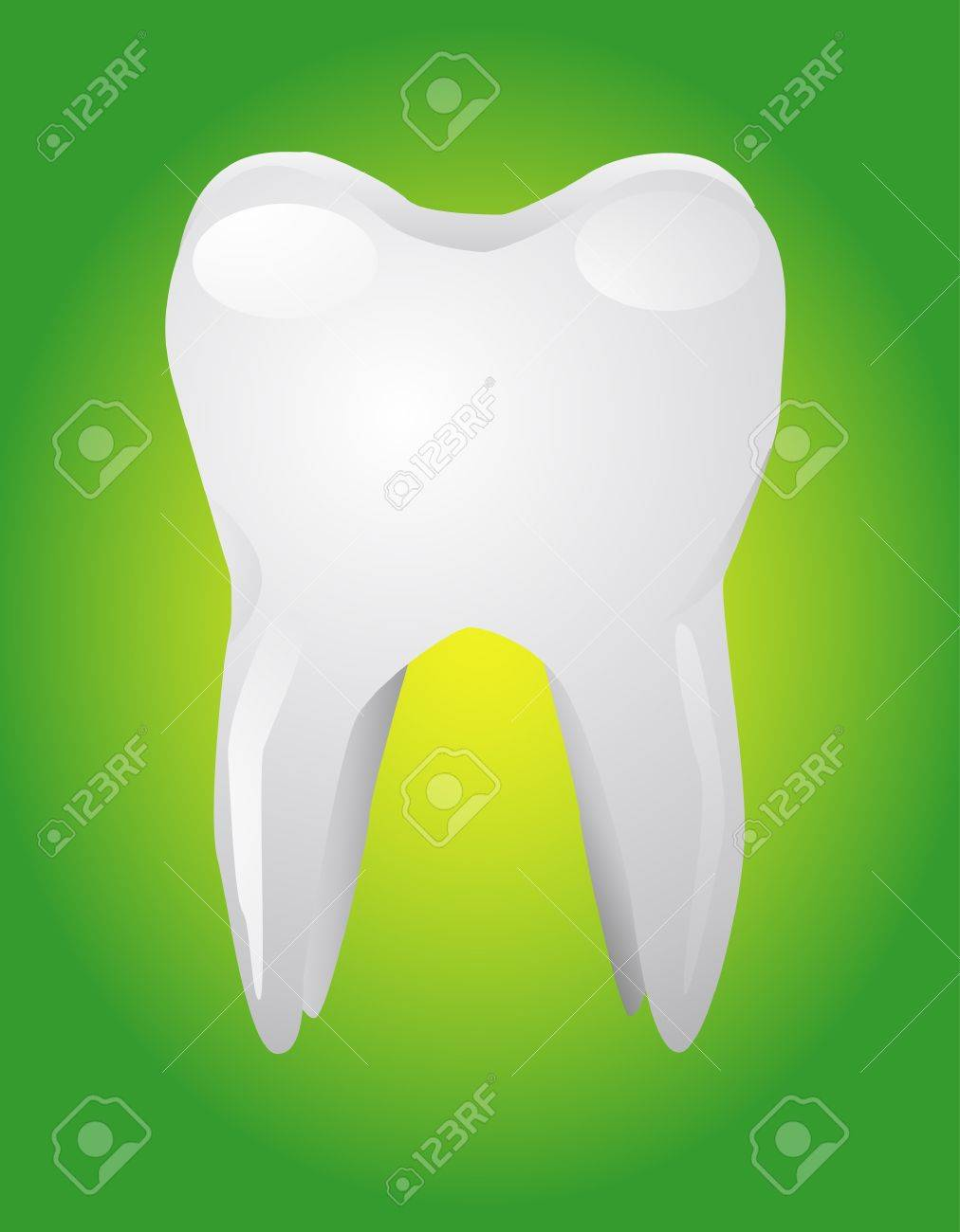 white tooth Stock Vector - 10333400