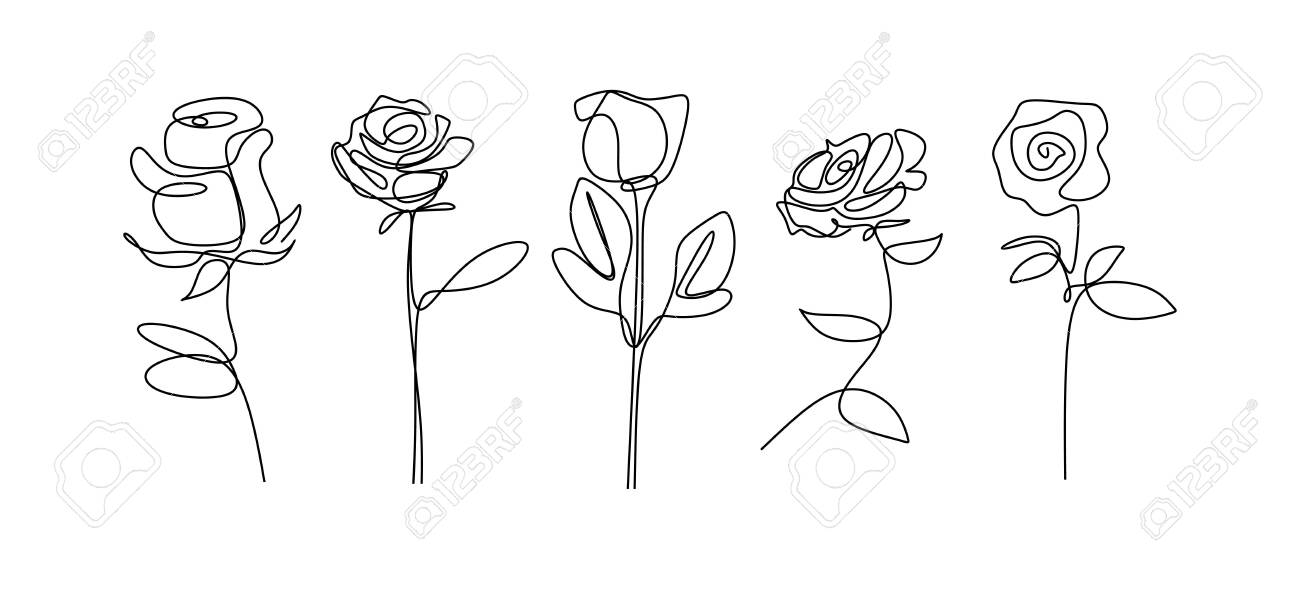 Rose Flower Continuous Line Drawing Single Hand Drawn Set Element Royalty Free Cliparts Vectors And Stock Illustration Image 129614384