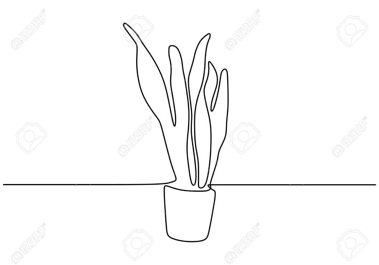 Continuous One Line Drawing Of Succulent Plant Minimalism Design Royalty Free Cliparts Vectors And Stock Illustration Image 134704813