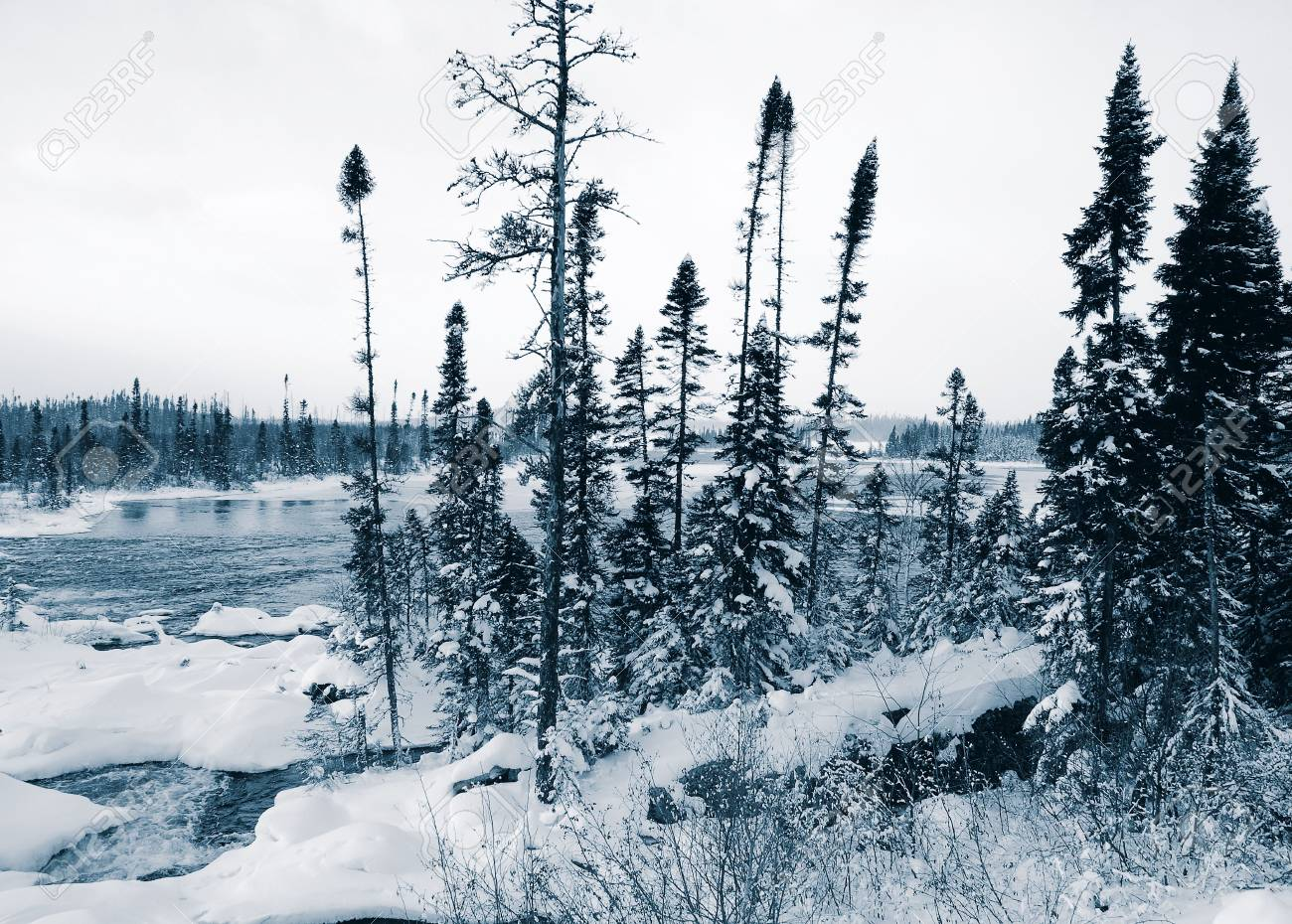 A winter landscape showing a foggy river in blue tones Stock Photo - 2370905