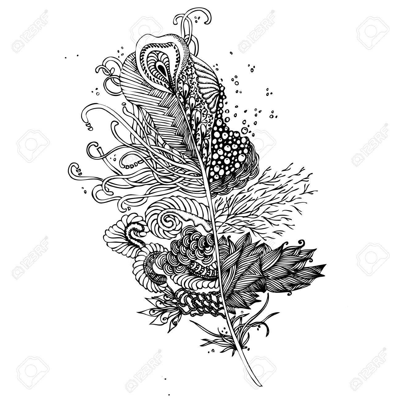 Feather Sur Un Fond Blanc Vintage Artistiquement Dessiné à La Main Plumes Tribale Stylisée Plume Doodle Dessin à L Encre Livre De Coloriage Noir