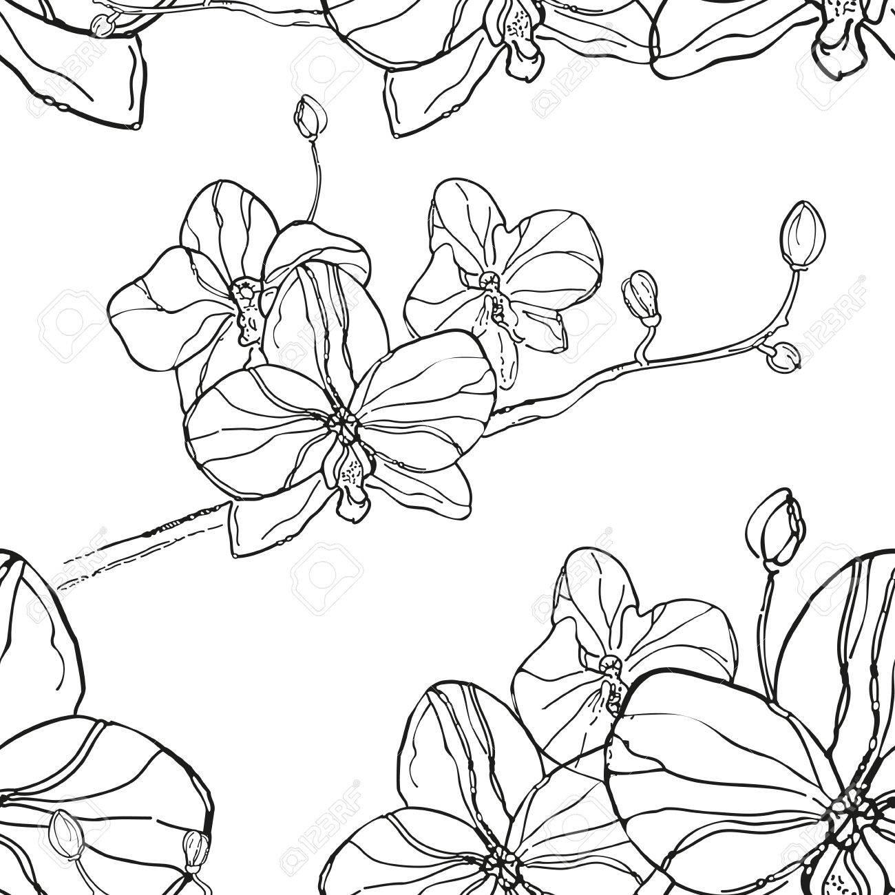 Patron Abstracto Sin Fisuras Con Flores De Orquideas Negras Sobre