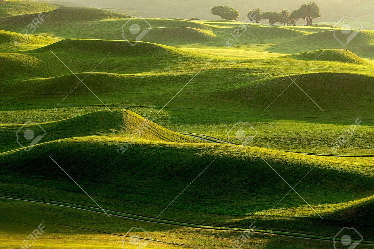 golf place with nice green Stock Photo - 12886484