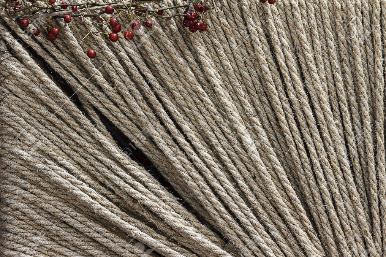 Hemp rope texture with few plant for adv or others purpose use Stock Photo - 17032978