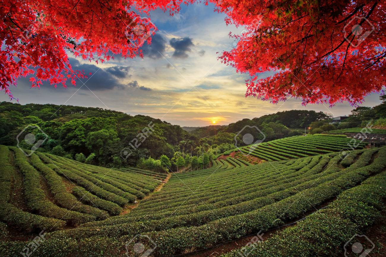 Image Of Beatiful Landscape Taiwan For Adv Or Others Purpose