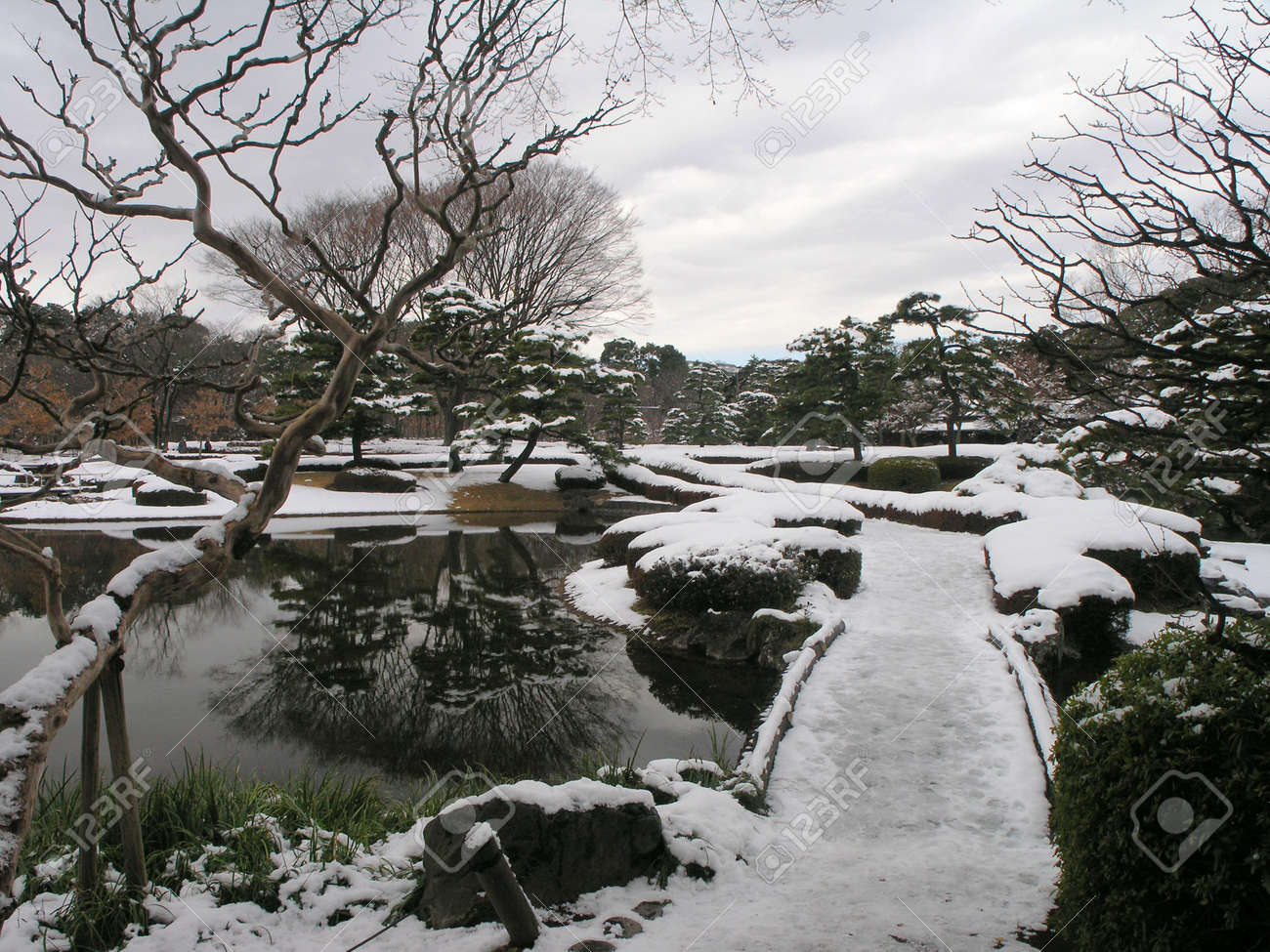 east imperial gardens in tokyo at winter stock photo picture and