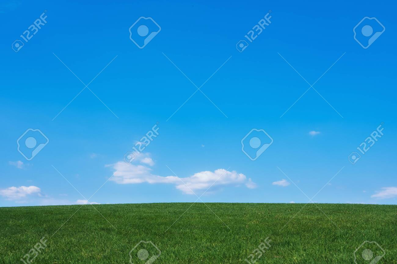 Image of green grass field and bright blue sky background - 134377113