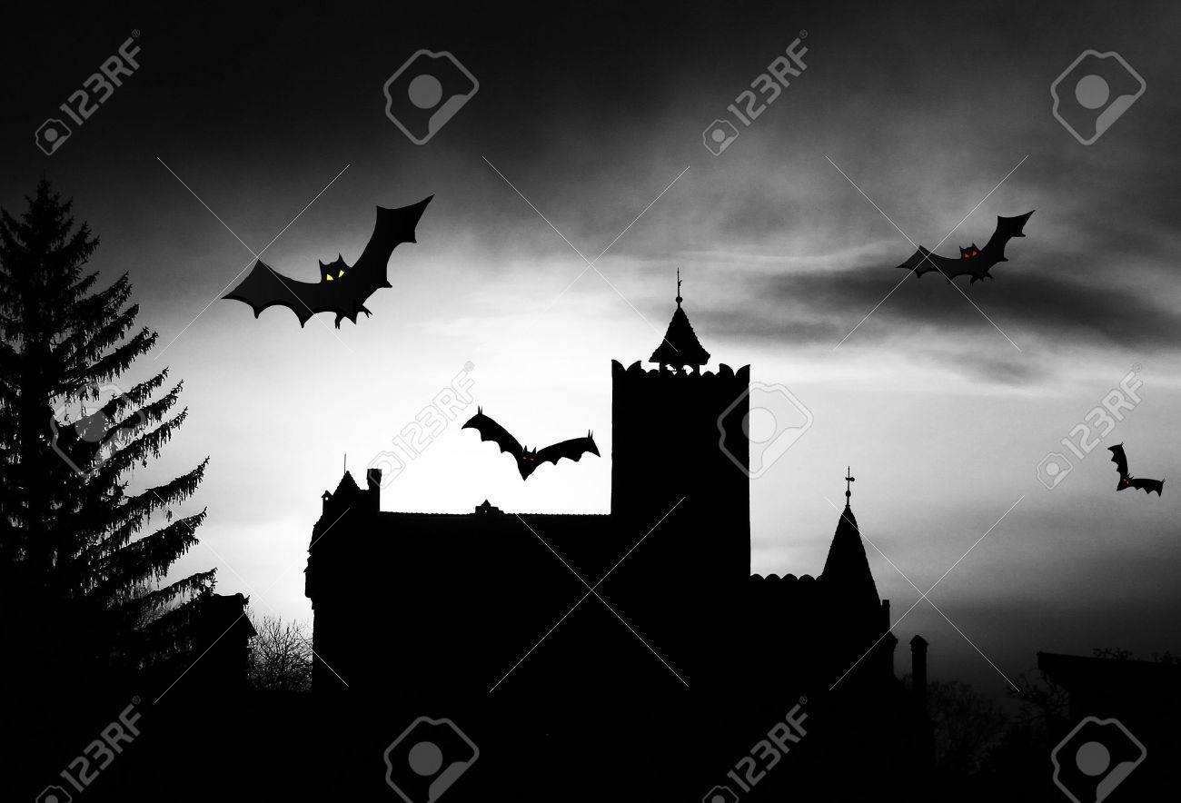 Dracula Castle silhouette Standard-Bild - 11234541